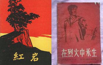 小说书籍封面_小说《红岩》和报告文学《在烈火中永生》封面.