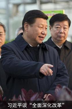 习近平谈全面深化改革