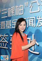 刘璇|王弢|刘璇资料|刘璇最新消息|刘璇老公