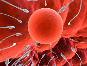 关于捐精,男人的动机与顾虑