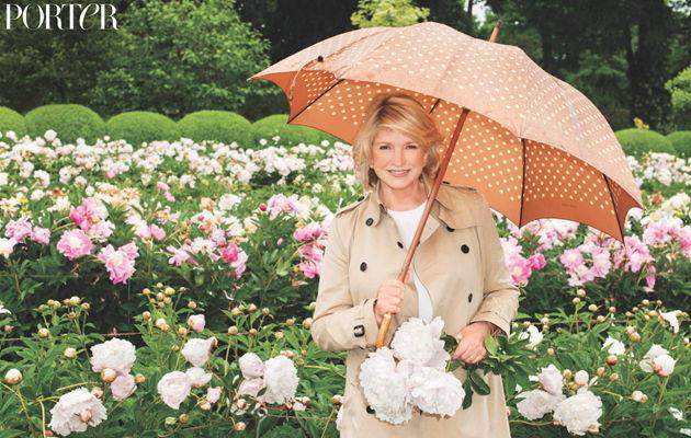 非常女人,美国家政女王,玛莎·斯图尔特