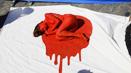 日本政府试图用钱使弑海豚合法