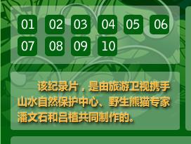 《熊猫列传》在线观看