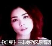 王菲 红豆