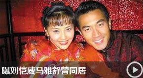 刘嘉玲称两人问题很多